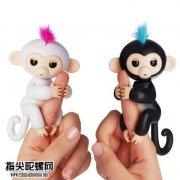 指尖猴子有多火?