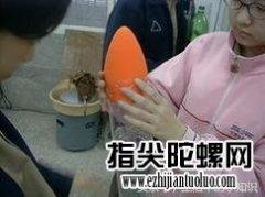 https://www.tl6.net/shuihuojian/5754.html