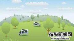 空地上的奶牛十大悖论内容讲解